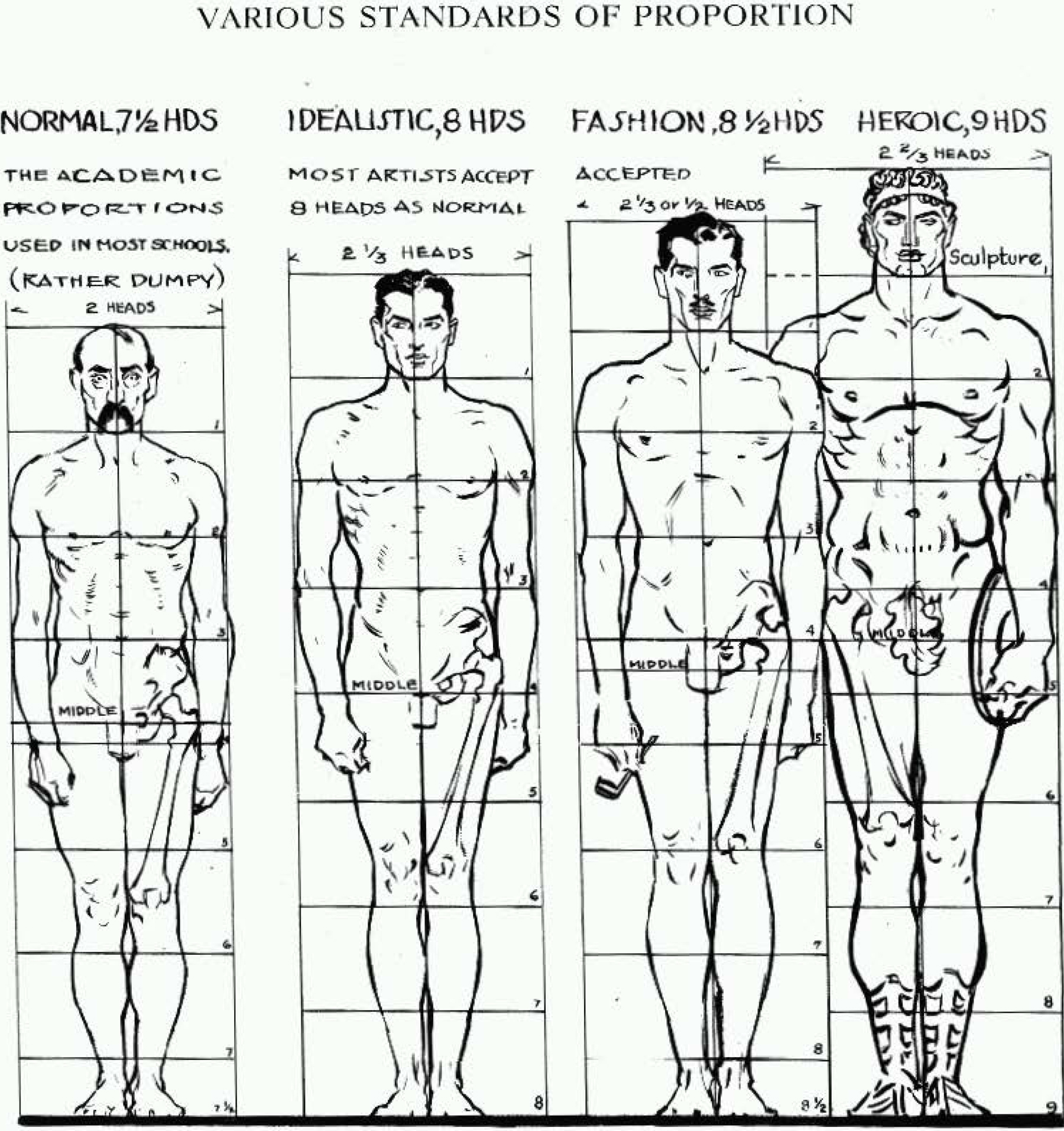 Proportions Of The Human Figure How To Draw The Human Figure In The Correct Proportions