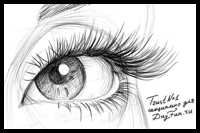 Eyelashes Drawing Lessons & Tutorials for How to Draw Eye