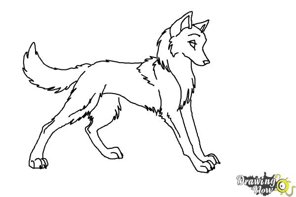 How To Draw Anime Wolves Drawingnow