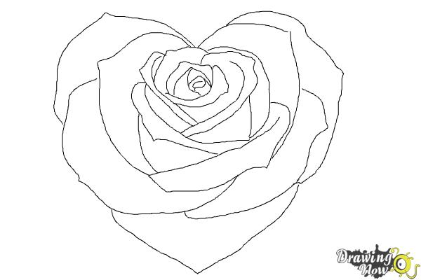 How To Draw A Heart Rose Drawingnow