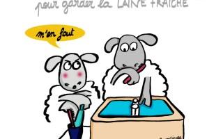 Laine et haleine - Illustration-by Drawingsandthings