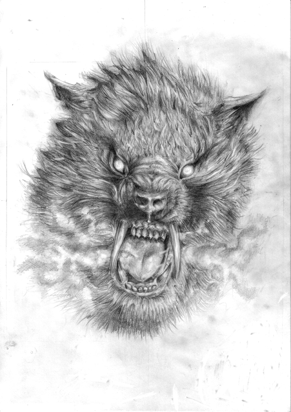 Werewolf Drawing Pencil Sketch Colorful Realistic Art