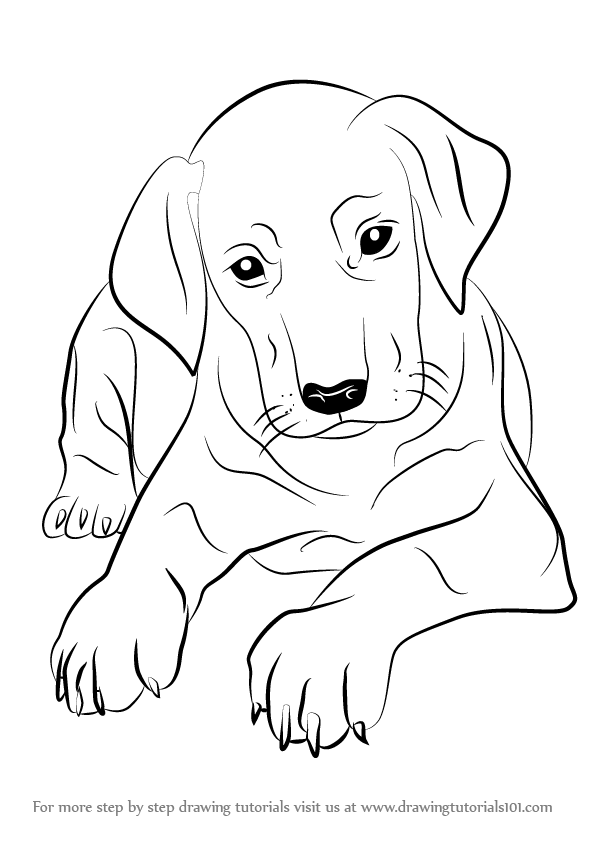 Dog Man Coloring Pages Coloring Pages