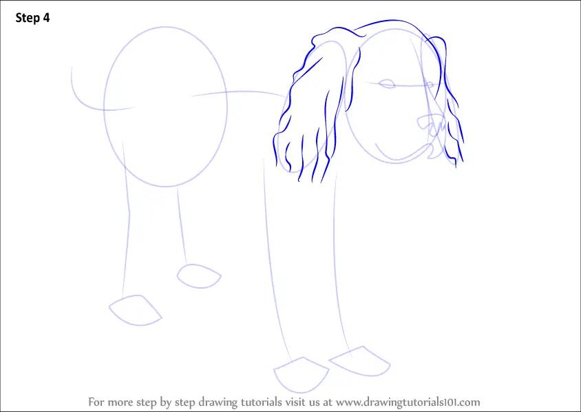 Step By Step How To Draw A Newfoundland Dog