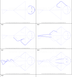 step by step drawing tutorial on how to draw an angel shark [ 751 x 1376 Pixel ]