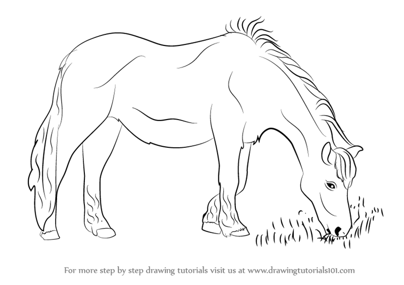 Coloring Pages Horse Coloring Eating Coloring Pages