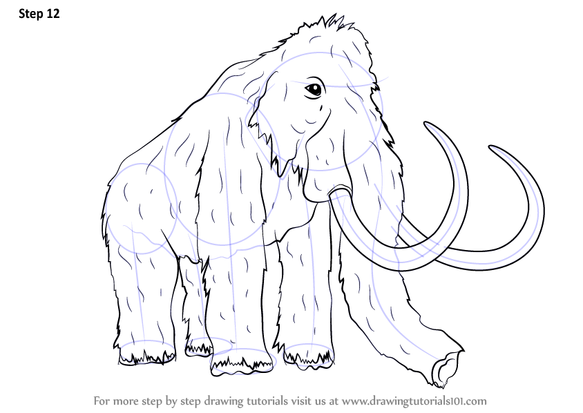 Learn How To Draw A Woolly Mammoth Other Animals Step By