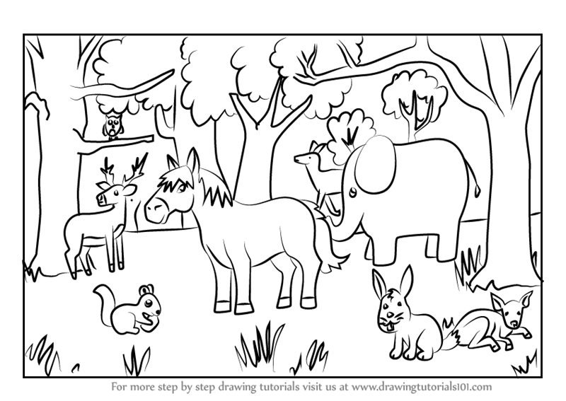 Learn How to Draw a Forest with Animals (Forests) Step by