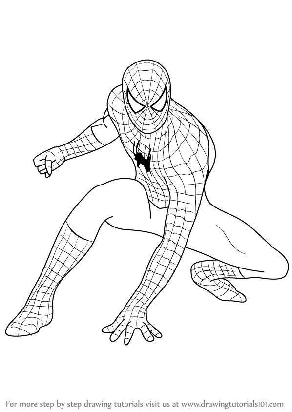 Learn How to Draw Spiderman (Spiderman) Step by Step