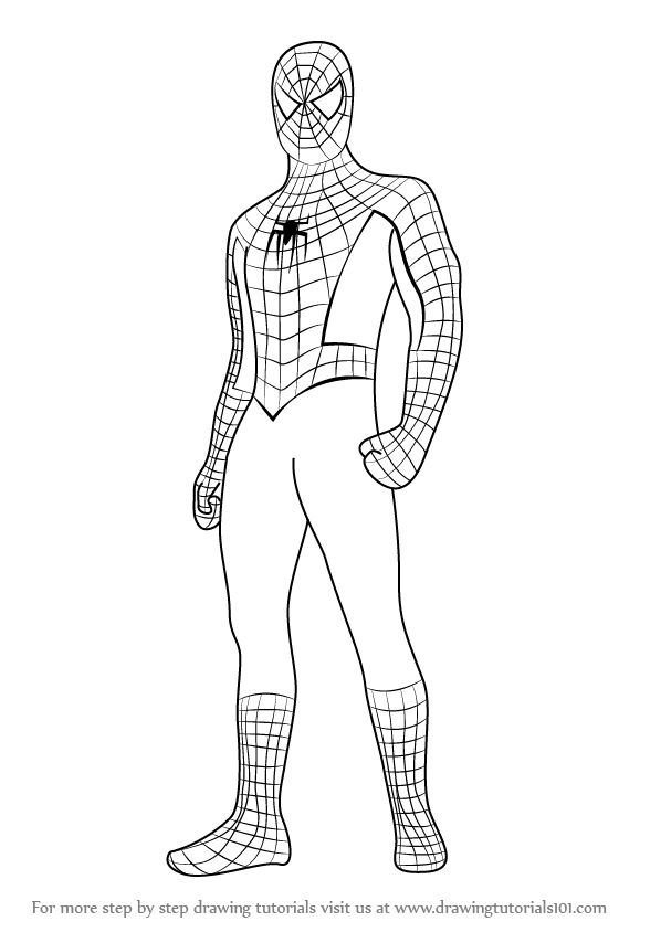 Learn How to Draw Spiderman Standing (Spiderman) Step by