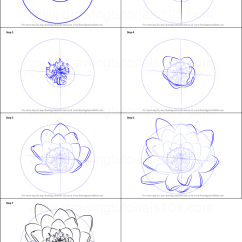 Lily Diagram Printable Venn Calculator 2 Sets How To Draw Water Flower Step By Drawing Sheet Drawingtutorials101 Com