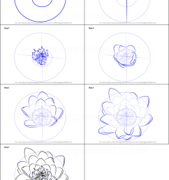how to draw water lily flower printable step by step drawing sheet drawingtutorials101 com [ 751 x 1111 Pixel ]