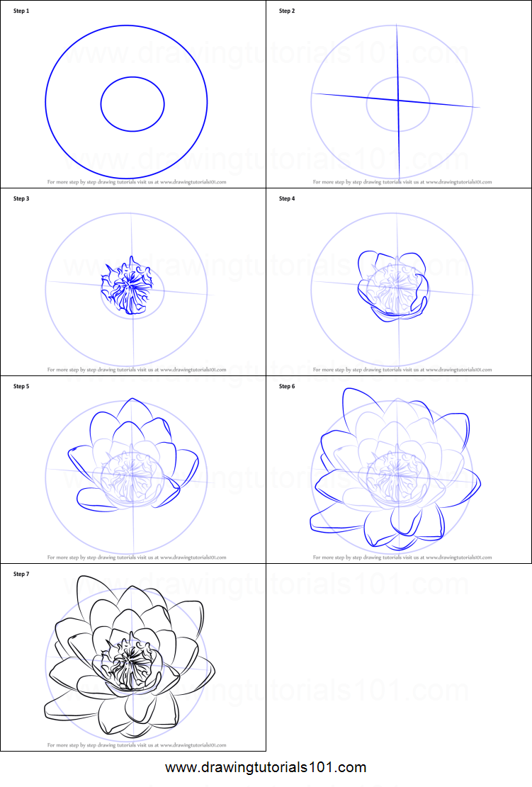 medium resolution of how to draw water lily flower printable step by step drawing sheet drawingtutorials101 com