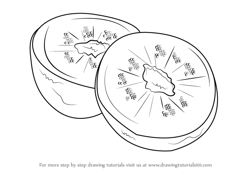 Learn How to Draw Kiwi Fruit (Fruits) Step by Step