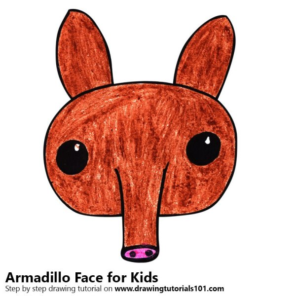 how to draw an armadillo # 66