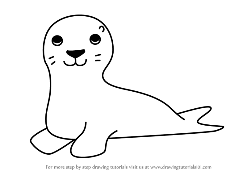 Learn How to Draw a Sea Lion for Kids (Animals for Kids