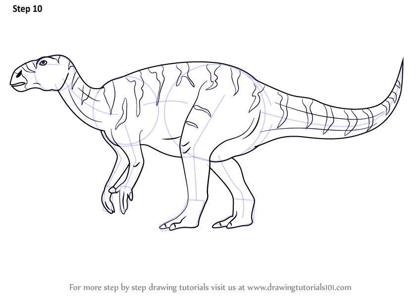 Learn How to Draw a Iguanodon (Dinosaurs) Step by Step