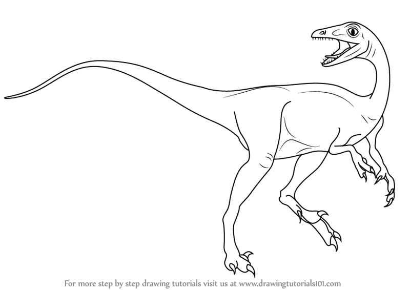 Learn How to Draw a Troodon (Dinosaurs) Step by Step