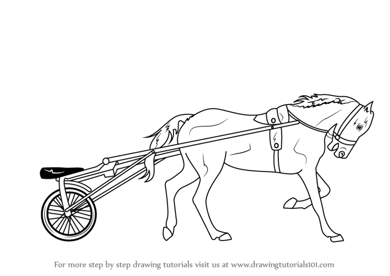 Learn How to Draw Racing Horse Cart (Other Sports) Step by