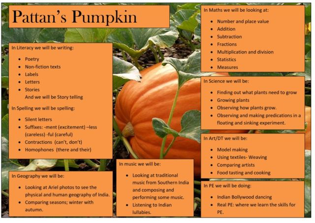 thumbnail of MTP Pattan's Pumpkin Year 2 Spring 1