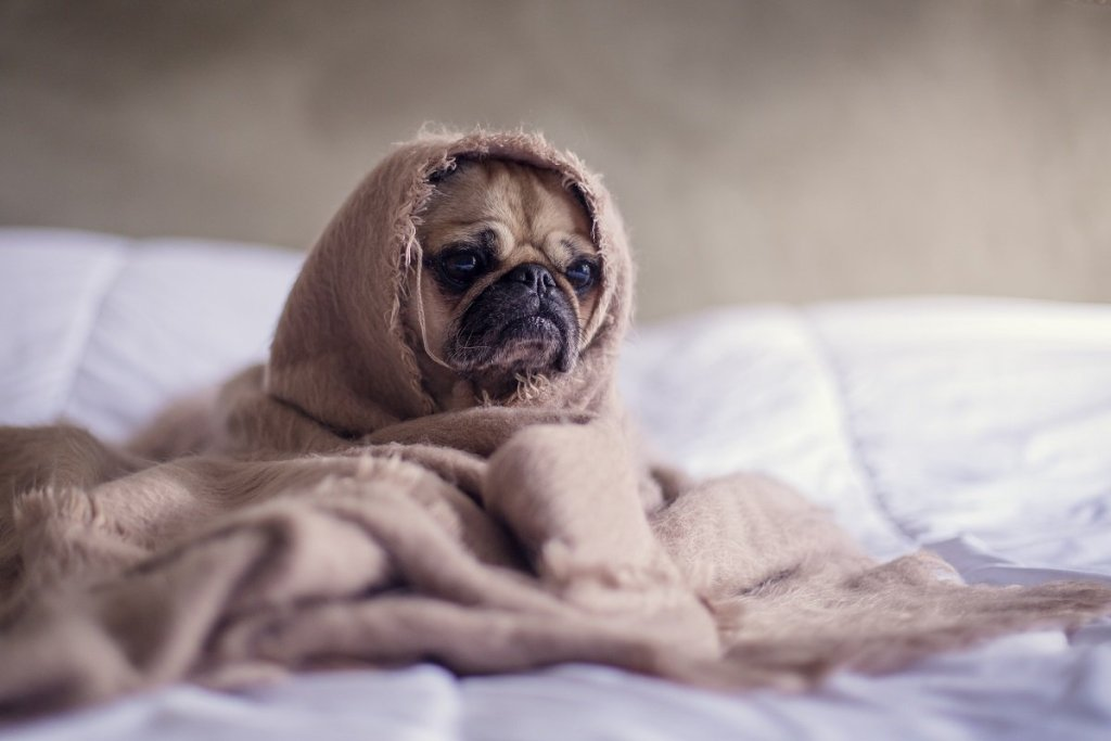 18 Things To Do When You're Having A Bad Day