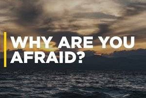 Why Are You Afraid