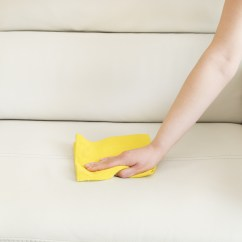 What To Clean My Leather Sofa With Scan Design Sofas Can I Use Upholstery Dr Chem Dry