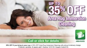 Area Rug Cleaning 35% off