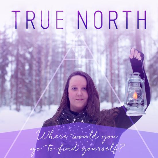 True North by Sonesence