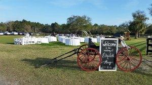 Littleberry Farm - Fernandina Beach, FL..
