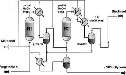 New Process for the Production of Biodiesel by