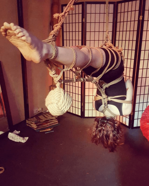 It takes around 30 minutes to suspend someone with Shibari knots, or even hours for more elaborate styles.