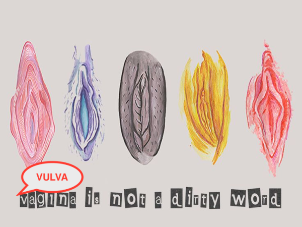 vulva-not-a-dirty-word