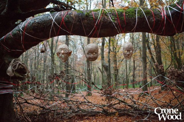 Do You Know What Happened in Crone Wood?