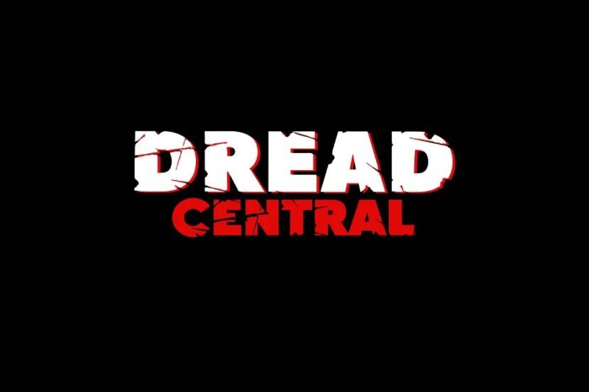 shudder-blackcatcam