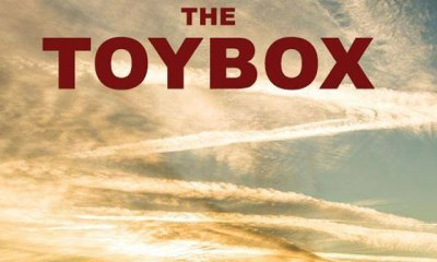 thetoybox s - Mischa Barton and Denise Richards Set to Play in The Toybox