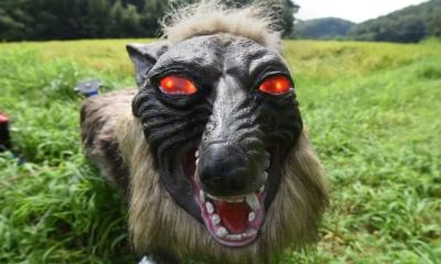 super monster wolf8 - Japanese Farmers Are Using Terrifying Robot Wolves to Guard Their Crops