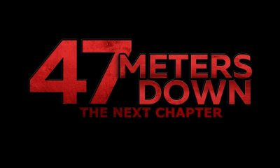 47 meters down the next chapter - 47 METERS DOWN: THE NEXT CHAPTER Bites Into a Teaser Trailer
