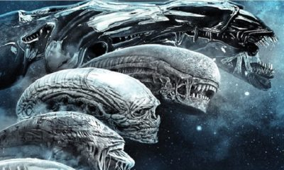 Aliens - A TV Series Based on Ridley Scott's ALIEN Franchise Could Be Coming To a Streaming Service Soon