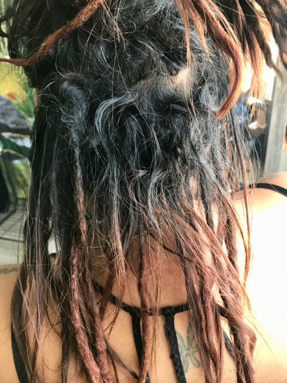 The purpose of this image is to show what new growth needing maintenance looks like for a client with partial dreadlocks.
