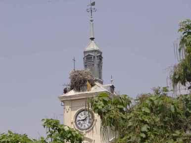 Plaza de Cervantes - Torre del Ayuntamiento