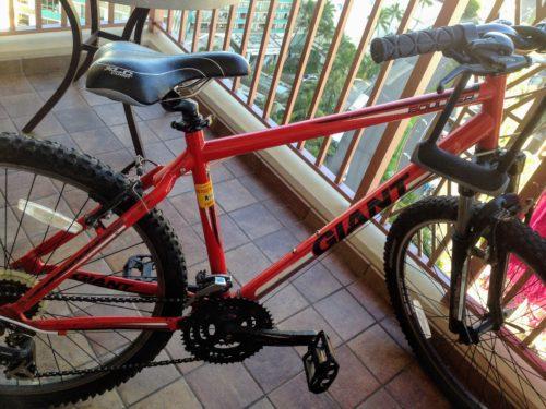 ハワイ 自転車 お尻が痛い