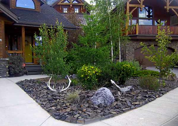 adam landscaping ideas