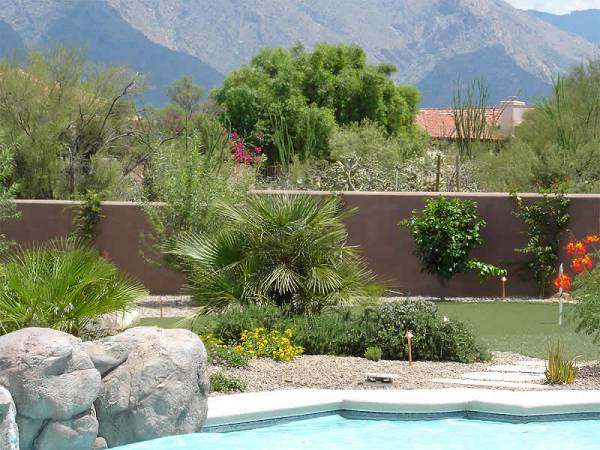Ideas for landscaping: Guide Arizona pool landscaping ideas