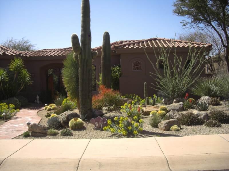 Front Yard Landscaping Ideas Arizona Desert Pots