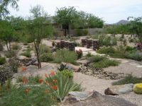 Desert Landscaping Ideas Photograph | Desert Landscaping Ideas