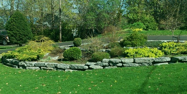driveway landscaping 2