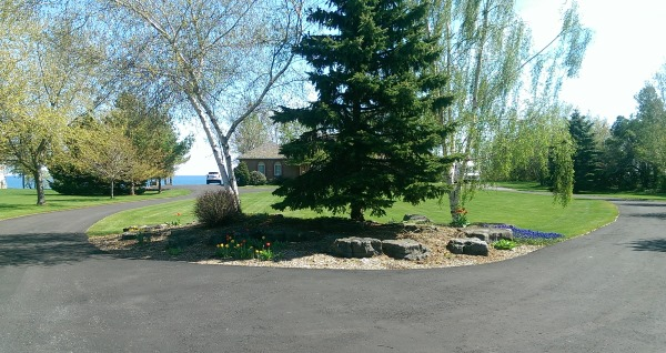 driveway landscaping 3