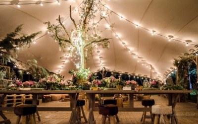 Todo lo que tienes que saber sobre las Carpas para bodas.