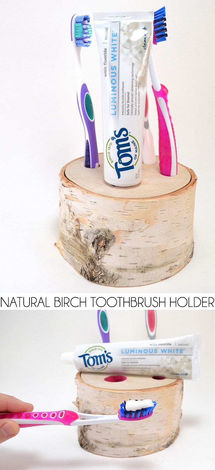 Natural Birch Toothbrush Holder Tutorial  Dream a Little Bigger